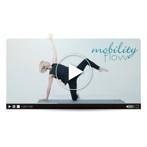 Mobility Flow (Master Class)