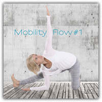 Mobility Flow #1